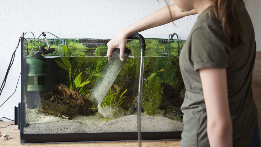 Changing Water in an Aquarium