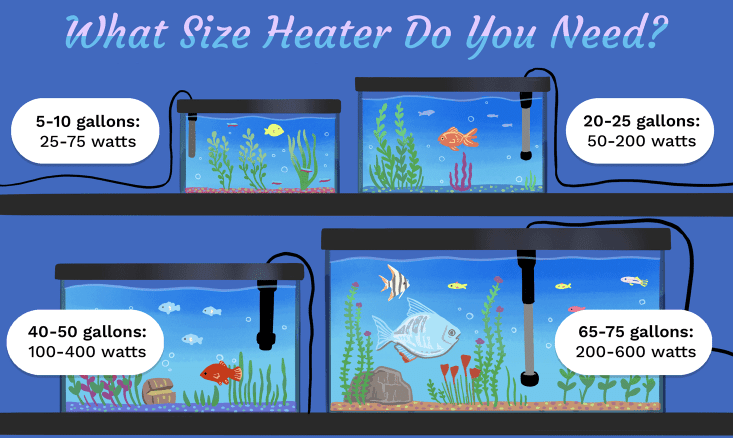 Right Heater for Your Tank
