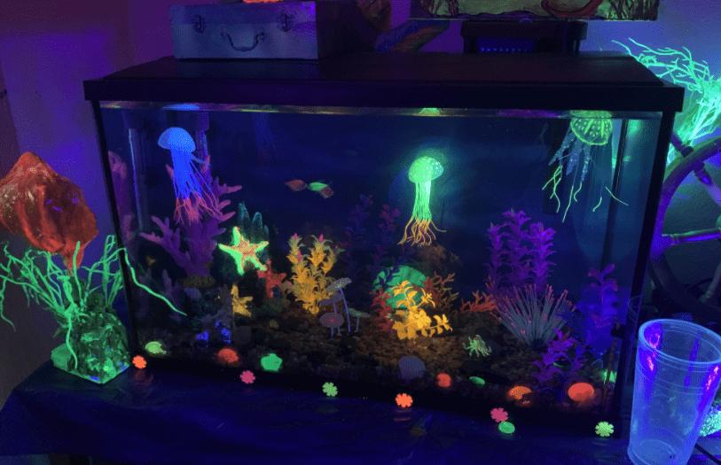black Light Aquarium