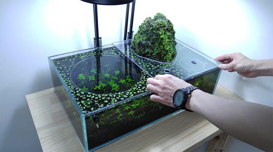 Aquarium Filters for Bettas