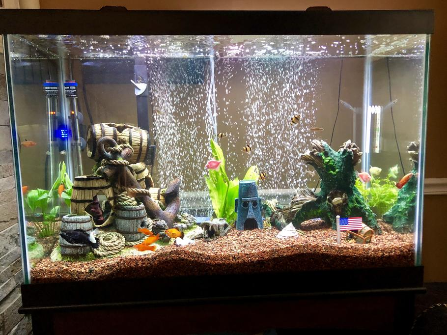water conditioner for fish tank